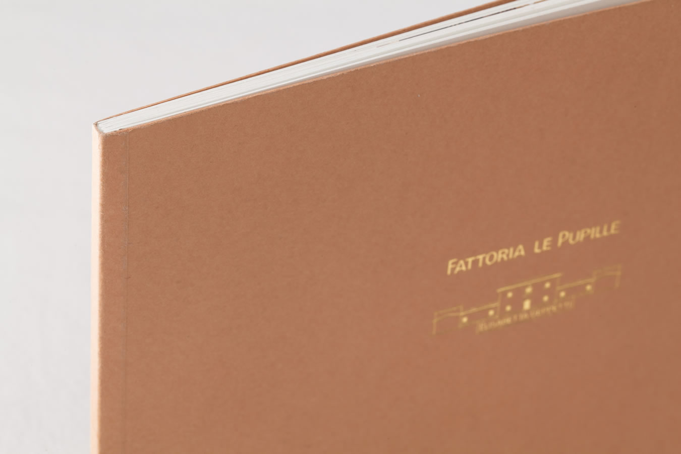 Fattoria Le Pupille IMG 0012
