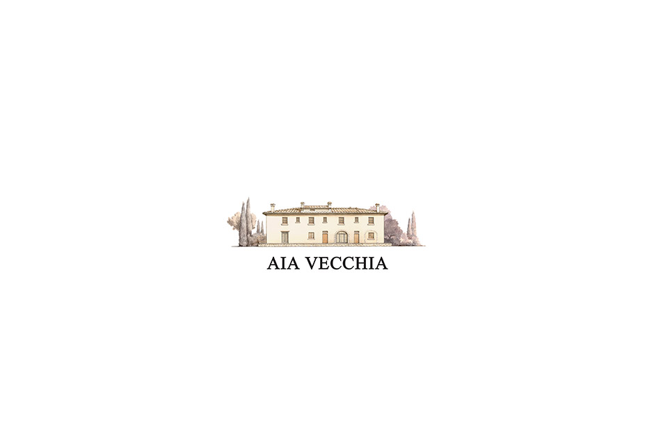 (re)Brand intro aiavecchia