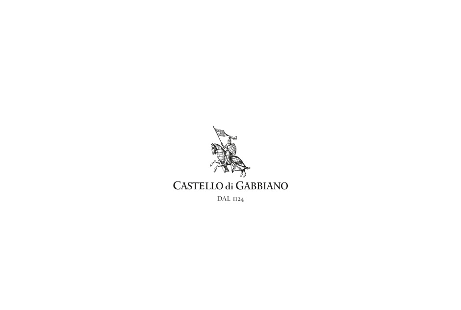 (re)Brand gabbiano intro