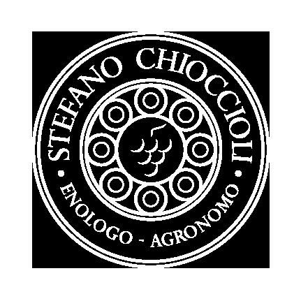 Stefano Chioccioli logo stefanochioccioli
