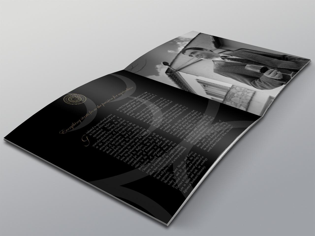 Stefano Chioccioli stefanochioccioli brochure3